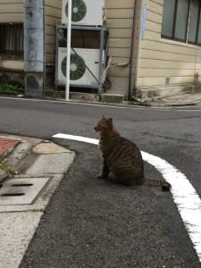 879ABCnail_Shinjuku