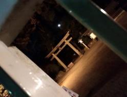 967ABCnail_Shinjuku